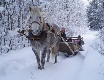 Actief winters Estland