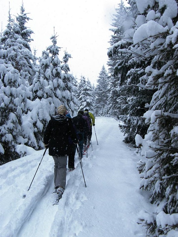 Sneeuwschoen wandelen