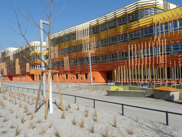Aan kleuren geen gebrek op de nieuwe universiteitscampus. De kleuren van het gebouw zijn door de architect bedoeld als protest tegen het, volgens hem, grijze Wenen