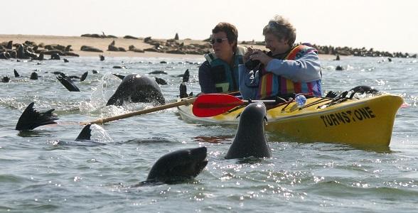 kayak-swakopmund