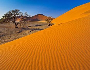 Explore Dream Discover Namibië