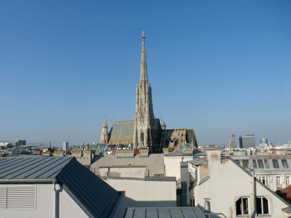 Het opvallende dak van de Stephansdom, gezien vanuit de verte.