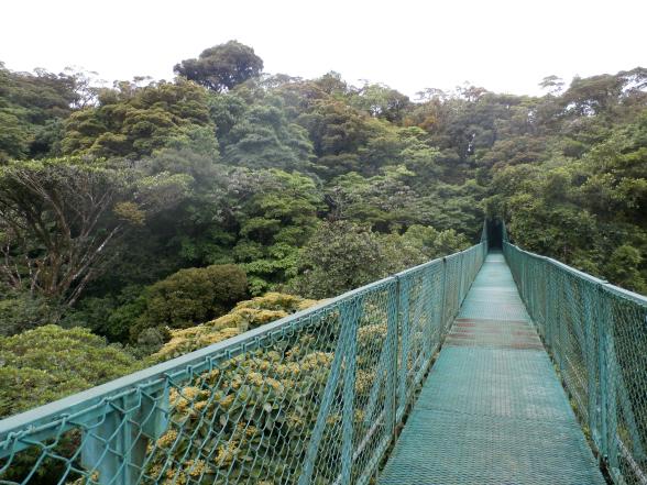 De 'hanging bridges' van Monteverde