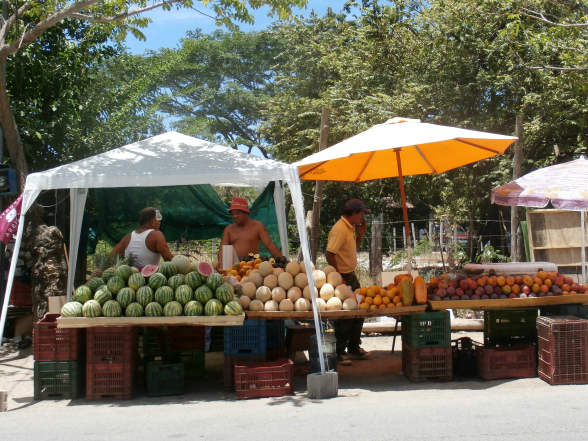 Fruitkraampjes langs de weg.