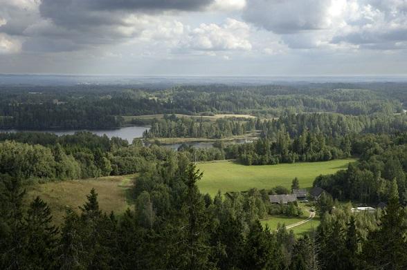 bos estland