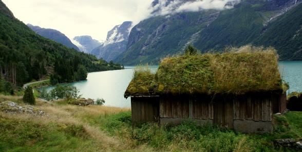 Veel van de (vakantie-) huisjes hebben hier groendaken: daken beplant met grassen, heide en zelfs soms domweg bomen. Prachtig