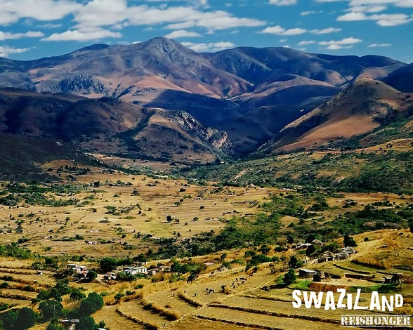 Swaziland reishonger