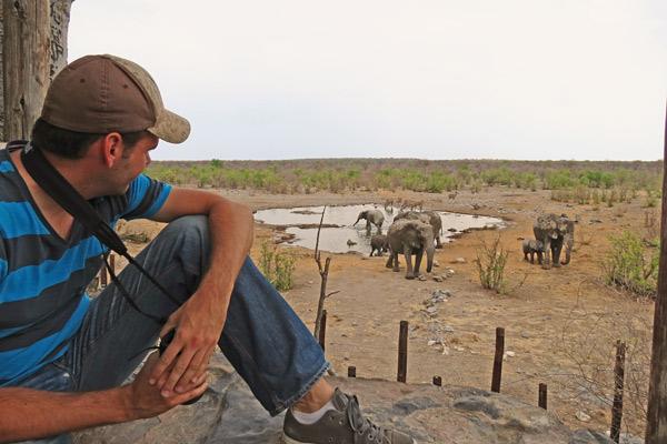 namibie daktent olifanten