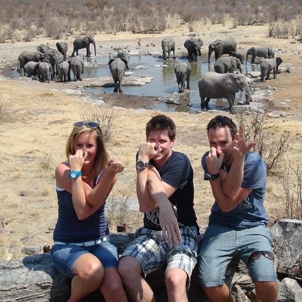 smart olifanten