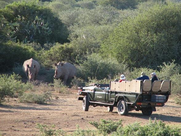 gamedrive zuid-afrika