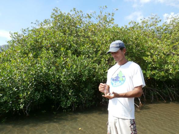 Ryan de Jongh plantte de eerste mangroveplantage ter wereld