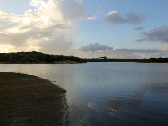 De zoutpannen van Jan Thiel op Curacao