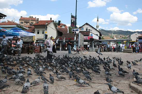 Bosnie, augustus 2012