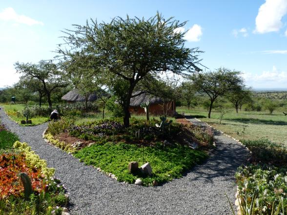 De tuin van het resort