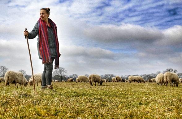Expediapioneer Daisy schapen hoeden