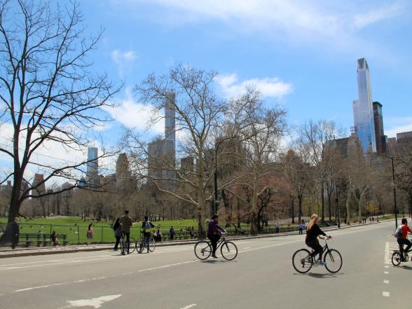 Central Park is een gigantisch stadspark, met een totale oppervlakte van 341 hectare. Per fiets vind ikzelf de beste manier om het park te verkennen, maar je kunt ook wandelen of een ritje maken met een fietstaxi (PediCab) of een paardenkoets