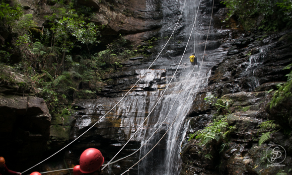 BLOG Blue Mountains Abseiling-25