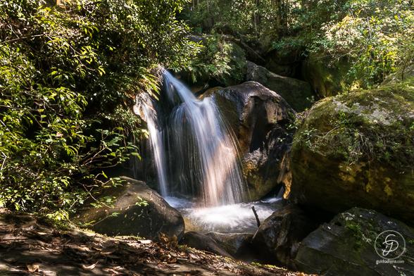 BLOG Blue Mountains hidden waterfall