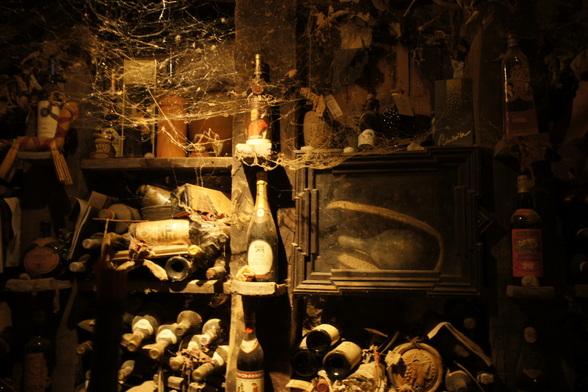 Elke goede Sloveen heeft een eigen wijnkelder. Deze gezellige kelder vind je in het kasteel van Socerb. Eén van de flessen in deze kelder is 800 jaar oud.