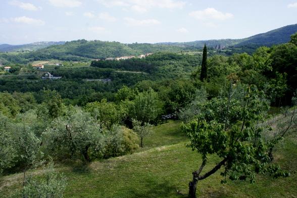 Het platteland bij de kust heeft met zijn cipressen wel wat weg van Italië. Nochtans heeft het een heel eigen karakter.