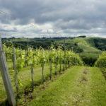 Fotospecial: Slovenië