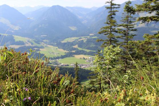 20150702 - Tirol - 297