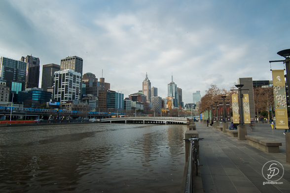 Melbourne city WEB-4