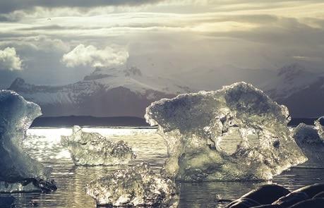 reisspecial ijs reishonger