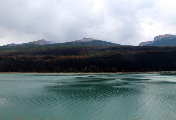 Bosbrand Medicine Lake Canada