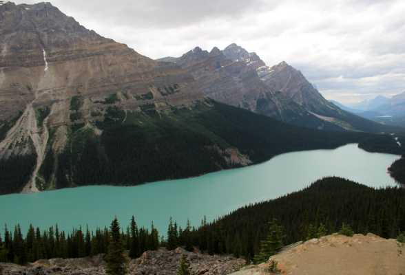 Peyto Lake Viewpoint langs de Icefields Parkway in Canada
