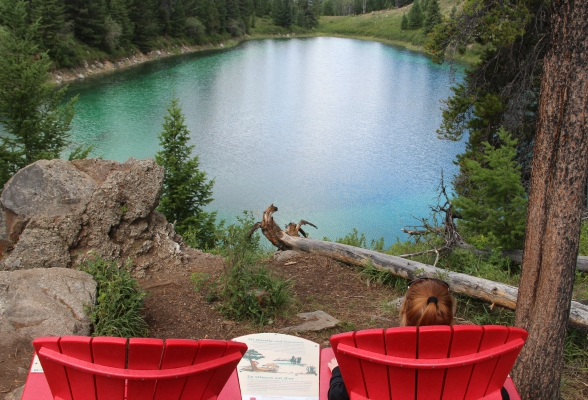 red chair project jasper national park canada reishonger