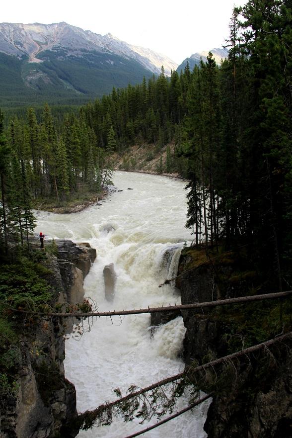 Sunwapta Falls Icefields Parkway Canada