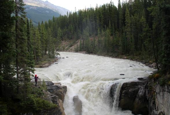 Sunwapta Falls Jasper Canada