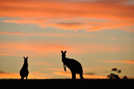Als backpacker heb je een visum nodig om Australië binnen te komen