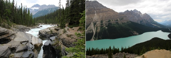 Mistaya Canyon en Lake Peyto Viewpoint langs de Icefields Parkway in Canada