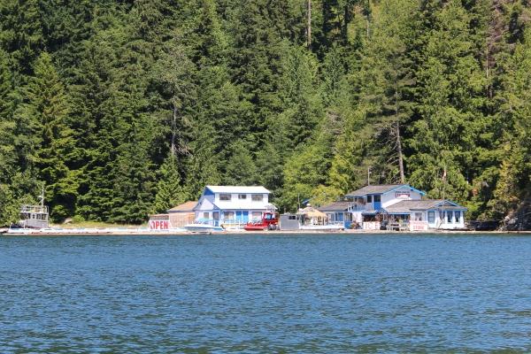 Op zoek naar wildlife op Vancouver Island
