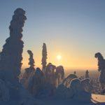 Lapland… een echte aanrader!