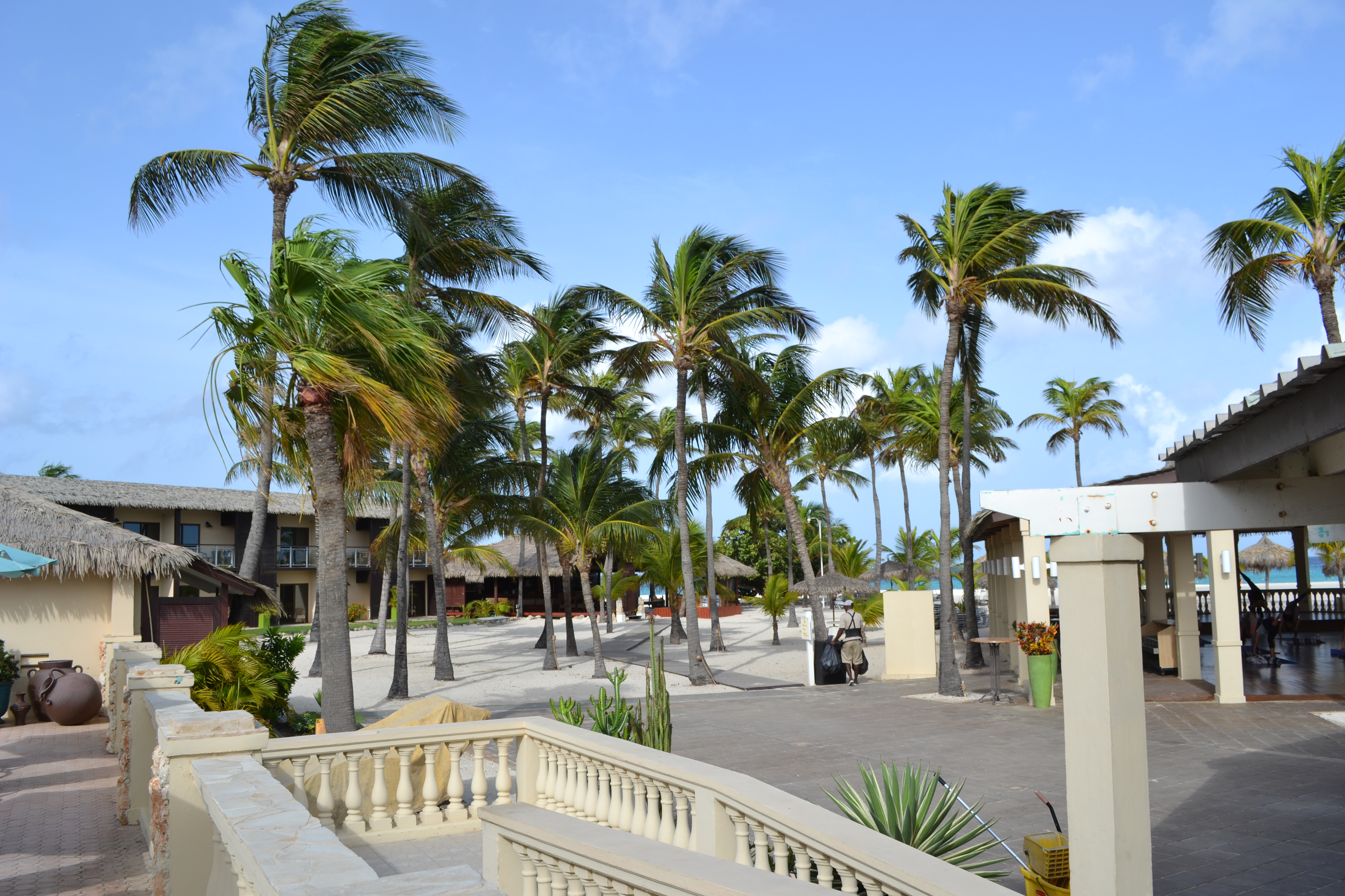 Manchebo Aruba