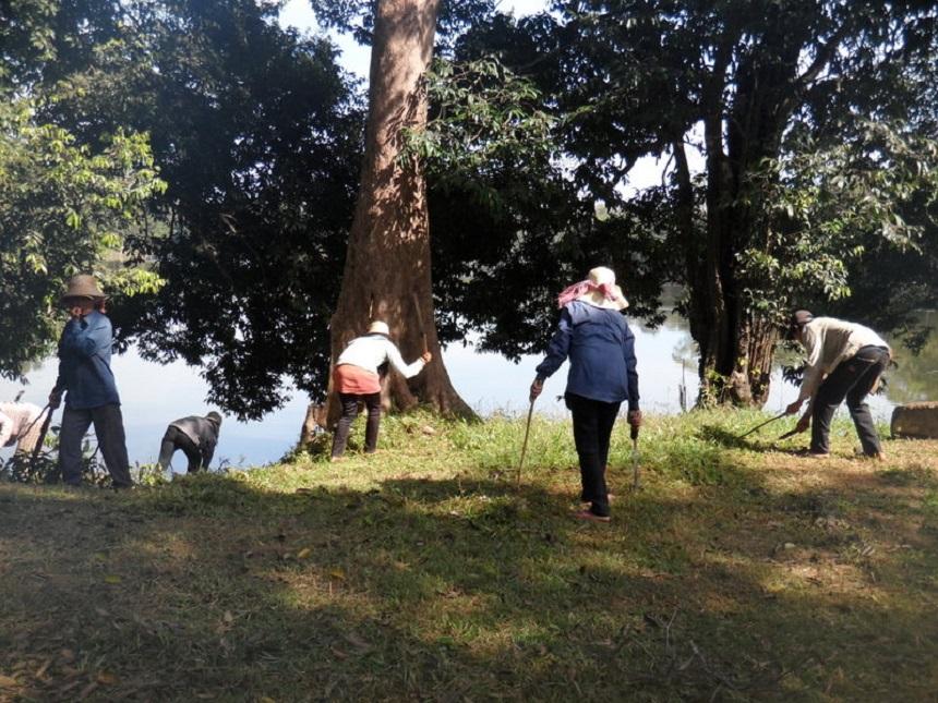 Gras onderhouden Angkor Wat