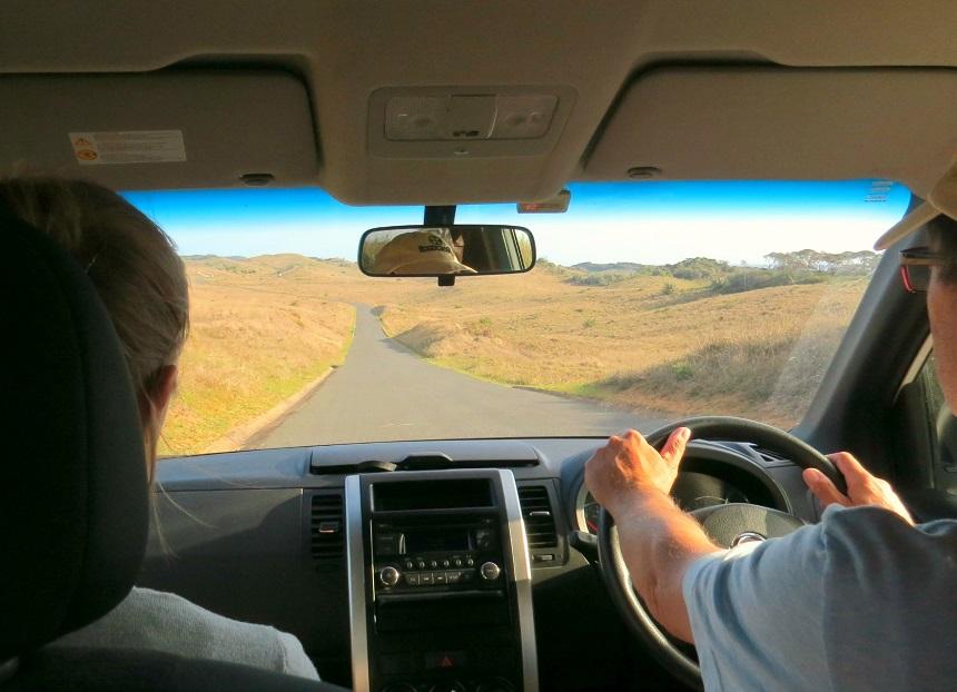 selfdrive-safariparken