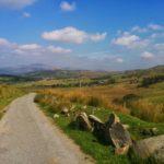Meanderen tussen heuvels en schapen