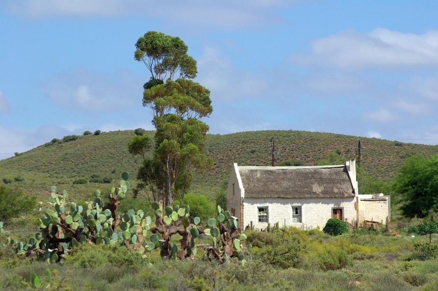 Cactussen en hier en daar een huis.