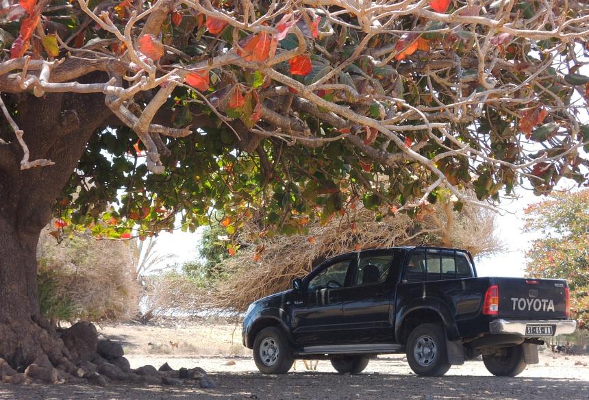 Een 4WD is wel nodig op Boa Vista.