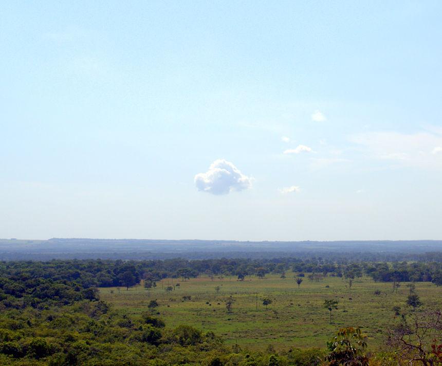 De uitgestrekte weilanden van Los Llanos