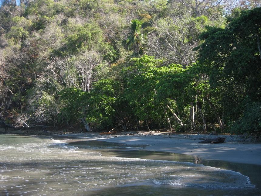 Stranden in het oosten van Costa Rica