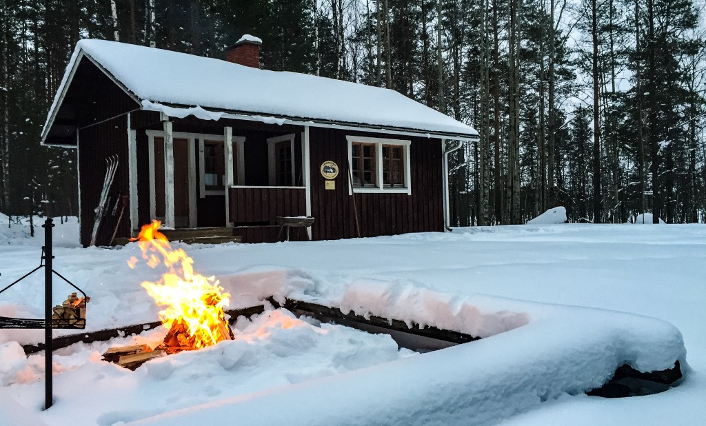 Wilderness cabin in Salamajärvi National Park