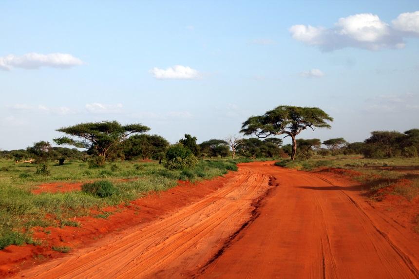 Safari Zambia