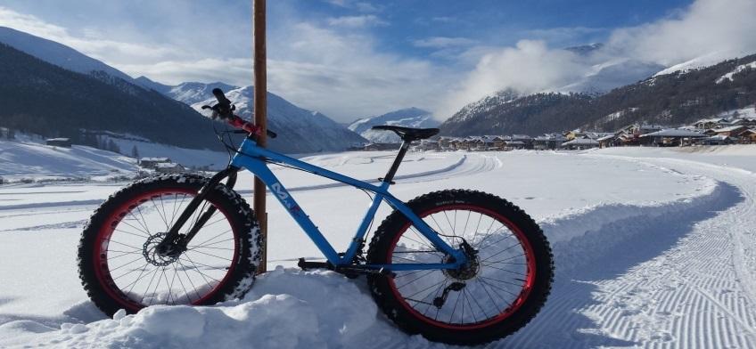 Fatbikes zijn fietsen met grote wielen die zorgen voor veel grip in de sneeuw