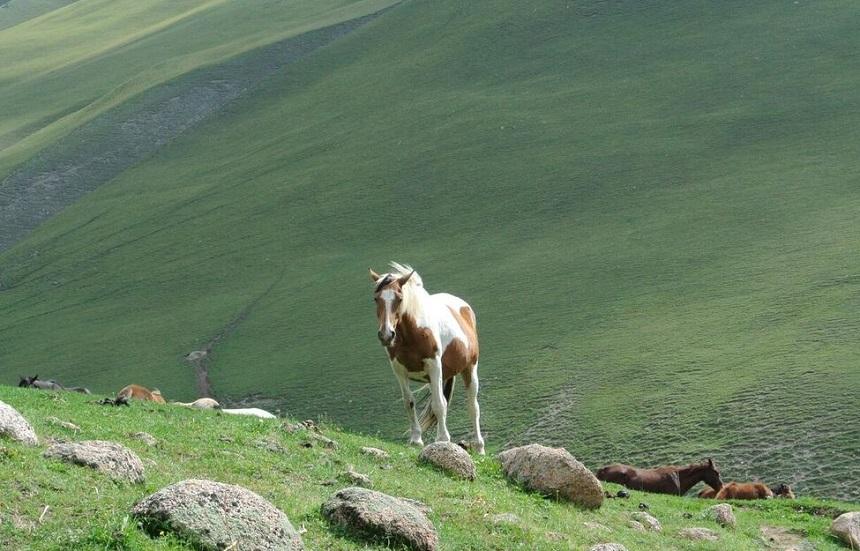 kirgizie landschap