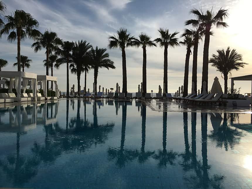Palmbomen Cyprus